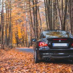 manutenzione auto in autunno